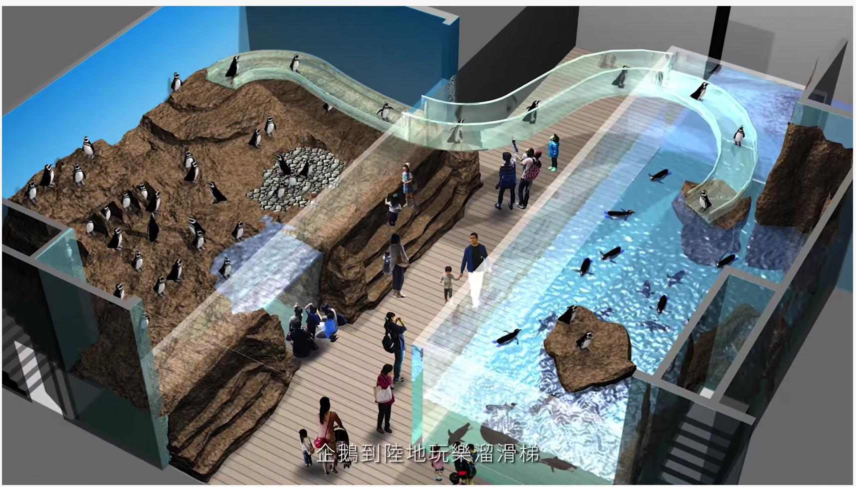 影/桃園超夢幻Xpark水族館開幕日、票價曝光! 最美6大看點報你知